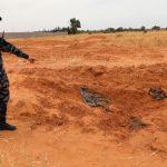 'Horror' and 'shock' at Libya mass graves