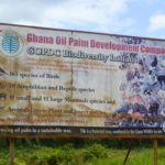 Ghana has tried to be responsible with its oil wealth. This is how