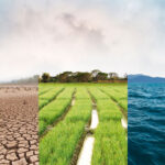 Climate change risk is complex: here is a way to assess it