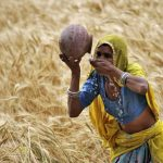 India's 'invisible' women hope for recognition at farmers protests