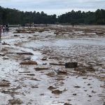 Surge in natural disasters takes heavy human and economic toll - U.N.
