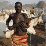Protecting nature can lower risk of armed conflict