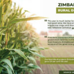 Farmers in Zimbabwe happier than city residents