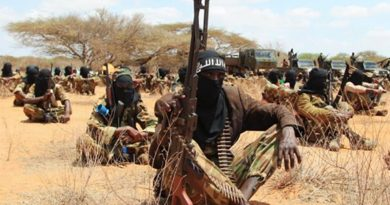 Ugandan army kills al Shabaab fighters